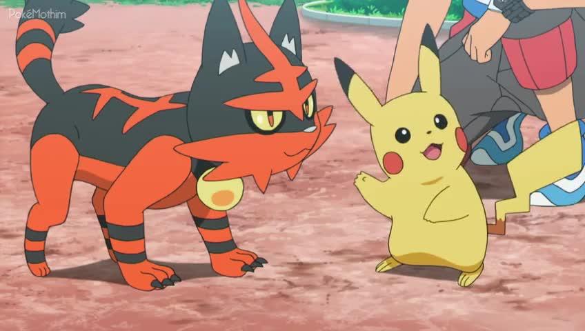 Pokemon Dublado Episódio - 1010Chamando a Atenção e Treinando Muito!