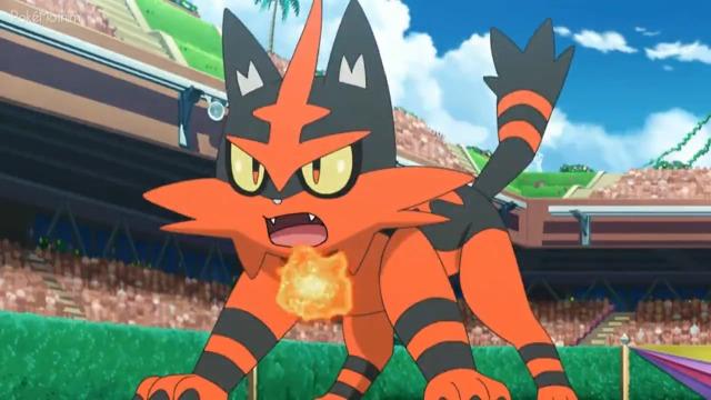 Pokemon Dublado Episódio - 1088Surpresas Ardentes!