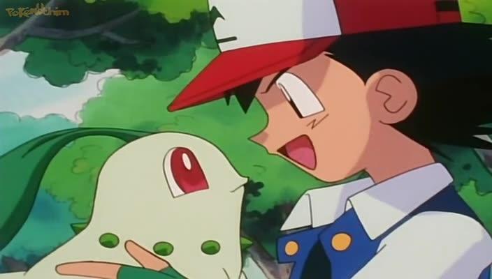 Pokemon Dublado Episódio - 146Exterminando Insetos