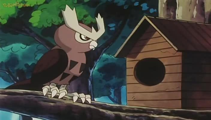 Pokemon Dublado Episódio - 156Cérebro de Ave