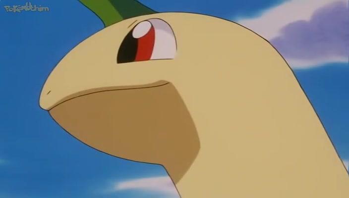 Pokemon Dublado Episódio - 163O Bicho Vai Pegar!