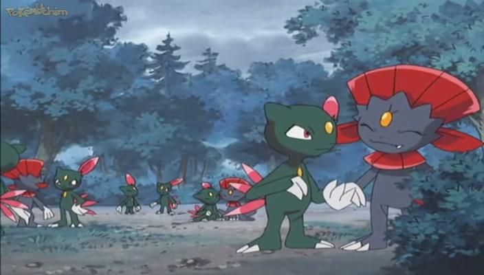 Pokemon Dublado Episódio - 462Duelos da Selva!