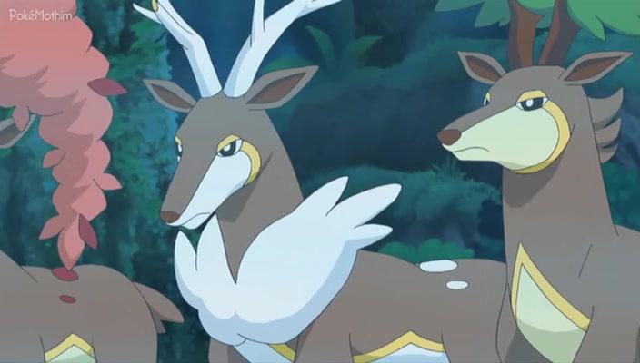 Pokemon Dublado Episódio - 716As Quatro Estações de Sawsbuck!