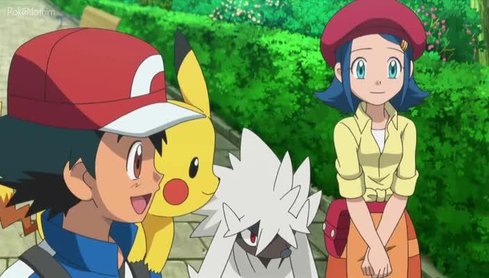 Pokemon Dublado Episódio - 812Tosando Furfrou!